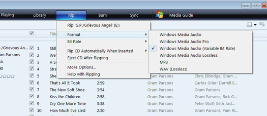 Windows Media Player Format options