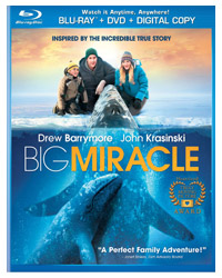 BigMiracle.jpg